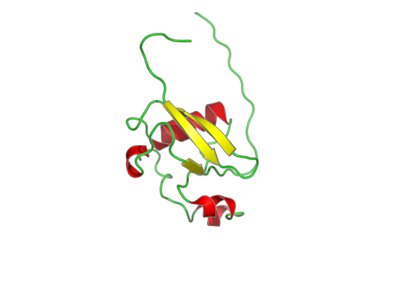 Ribbon image for 1wf9