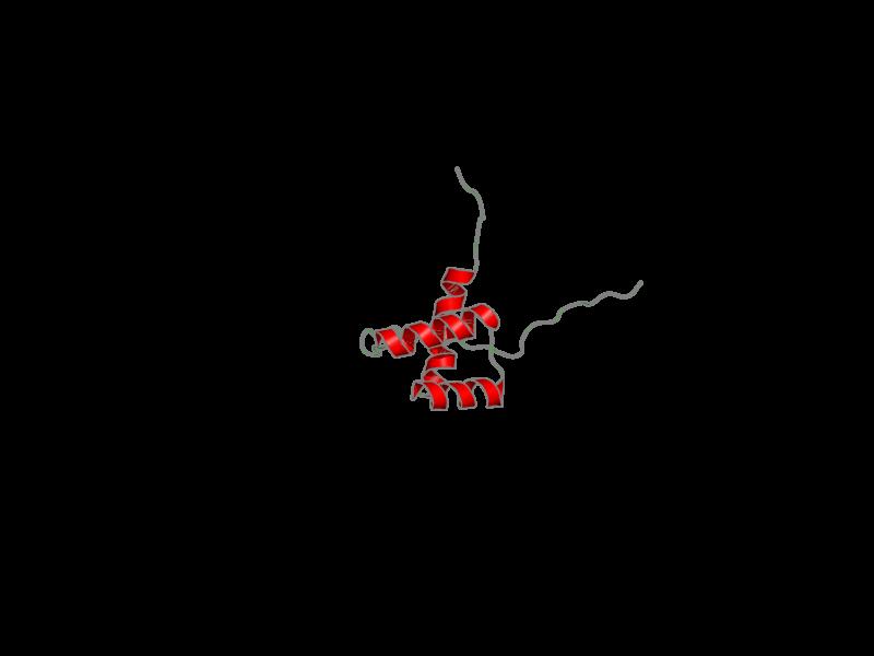 Ribbon image for 2dmt