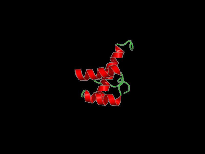 Ribbon image for 2dmu