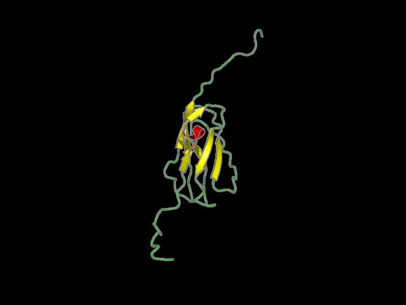 Ribbon image for 2d7o