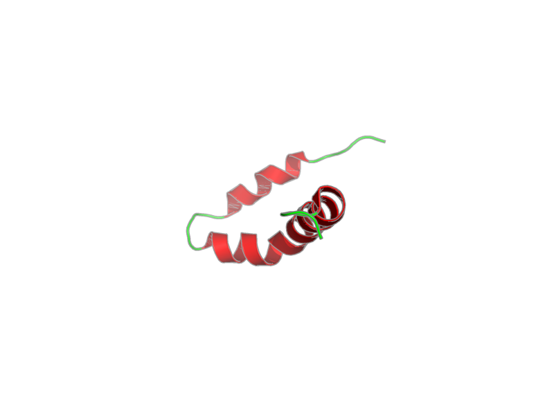 Ribbon image for 2lp1