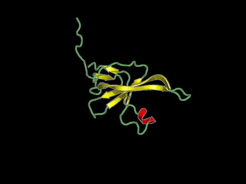 Ribbon image for 2k5d