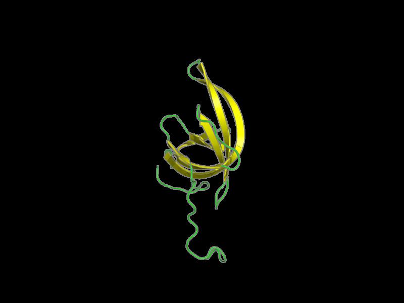 Ribbon image for 2k75