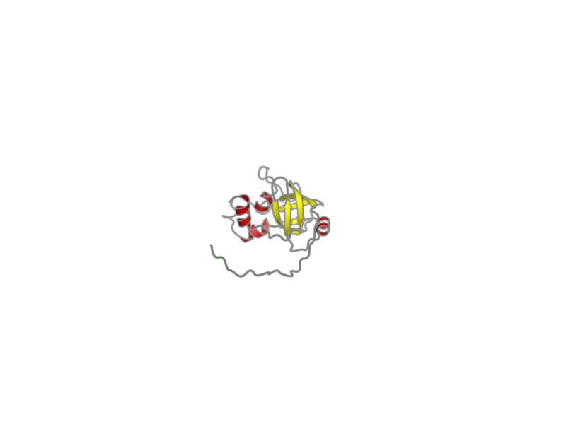 Ribbon image for 2ki8