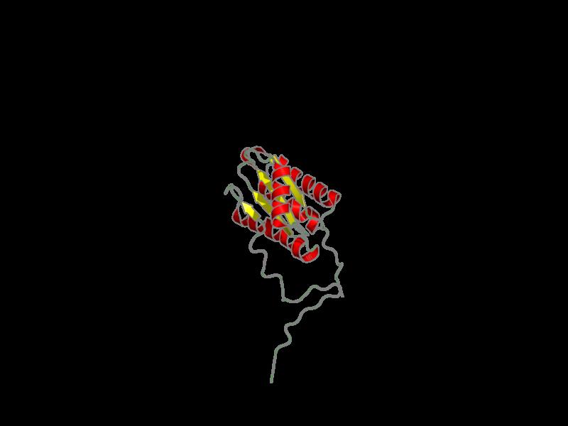 Ribbon image for 2kpt